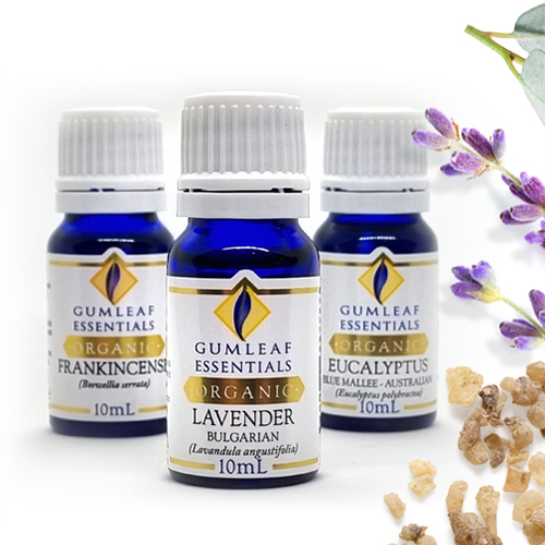 GUMLEAF ESSENTIALS ORGANIC ESSENTIAL OILS