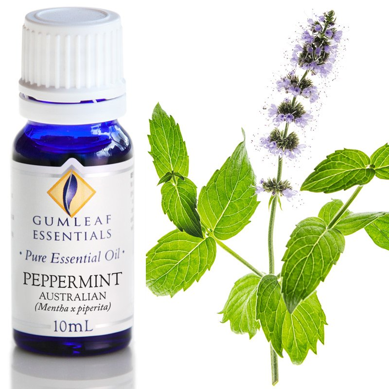 PEPPERMINT AUSTRALIAN ESSENTIAL OIL