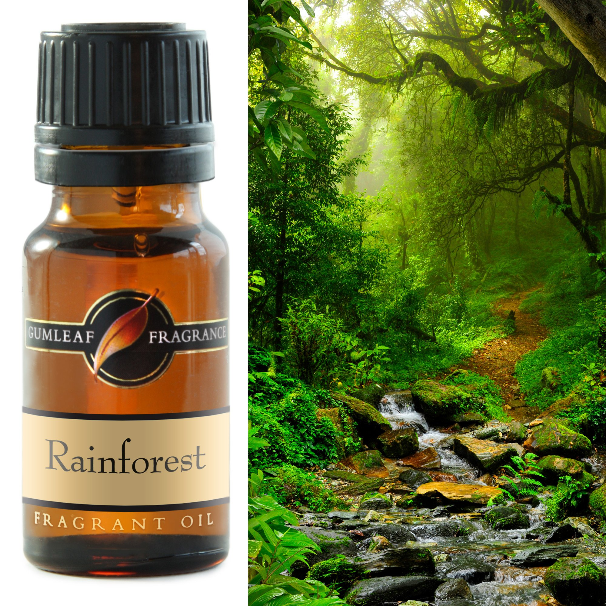 RAINFOREST FRAGRANCE OIL