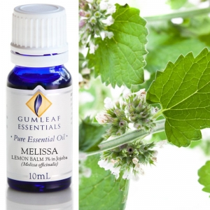 MELISSA LEMON BALM (3% IN JOJOBA) ESSENTIAL OIL