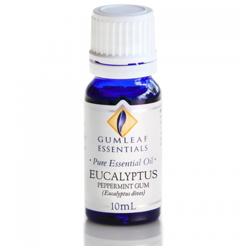 EUCALYPTUS PEPPERMINT GUM ESSENTIAL OIL