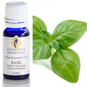 BASIL SWEET LINALOOL ESSENTIAL OIL