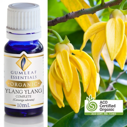 ORGANIC YLANG YLANG COMPLETE ESSENTIAL OIL