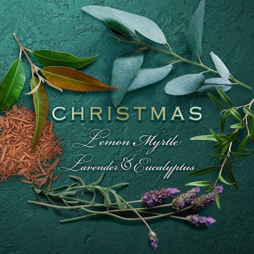 LEMON MYRTLE & EUCALYPTUS CHRISTMAS SCENT CAKE (SINGLE)