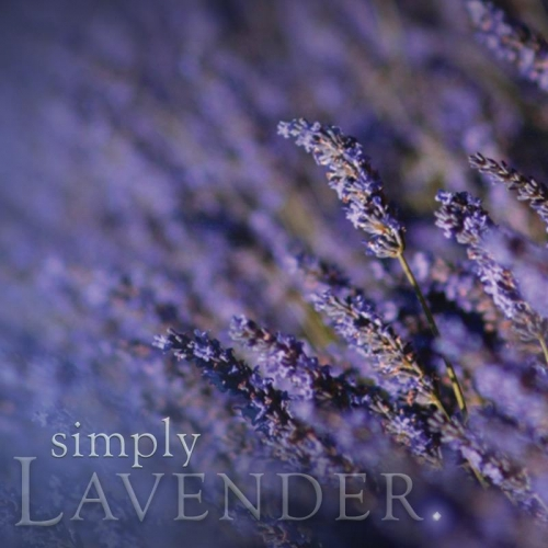 LAVENDER SCENT CAKE (SINGLE)
