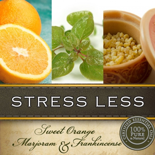 STRESS LESS HAND & BODY LOTION